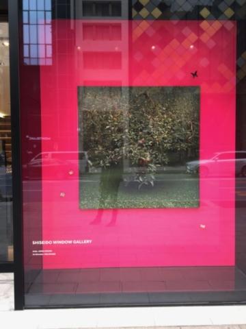 Shiseido Window Gallery Tokyo Japan art culture